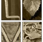 photography alphabet