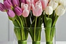 Lusting: Flower Arrangements
