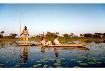Botswana Safari  / Botswana safari holidays focus on an enticing variety of experiences. #safari #botswana