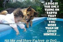 Pictures to make you smile / Sharing love for dogs