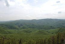 Vysoká, Malé Karpaty / Krasna malohorska sceneria, priroda, oddych
