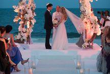 dally's wedding