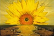 Sunflowers  ♥ / by Michelle Mills