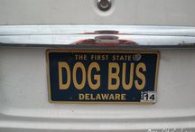 Cool License Plates / We love the imagination of people that know how to take 7 digits and make them into something cool on their #LicensePlate - Have a cool License Plate to share, comment on a plate and we'll add you to this Board. #ocmd