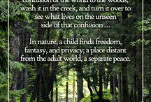 Exploring Nature / by TNReggioStudyGroup Tennessee