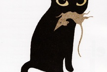 Black Cats for Sue