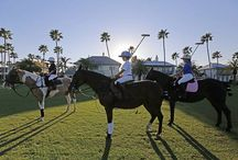 RESORTS- with Equestrian
