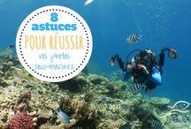 Conseils Photos sous-marines || Underwater photo tips
