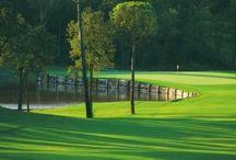 Golf / Golfing in Caldes: PGA GOLF DE CATALUNYA: best golf course in Spain PITCH & PUTT FRANCIAC