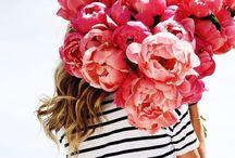 Bloms