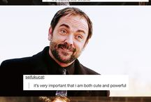 Crowley my spirit animal