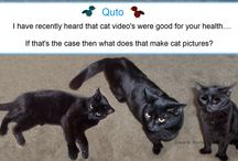 Blog posts / Lets have some funny Quto fun! Note: Anyone who has been on my site knows that it does not have a Pin It! button. I hope to get one someday soon. But for now I will say that it is okay to pin my Quto pictures!