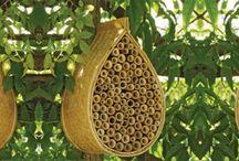Mehiläiset ja muut pölyttäjät