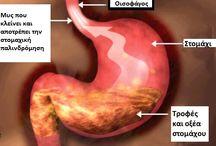 Τροφες που βοηθουν το στομαχι