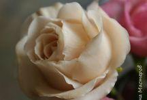 роза глина
