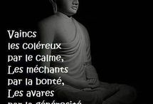 Bouddha / by Lilie Bab's