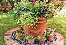 kert - virágcserép