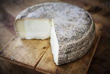 Formaggi / I FORMAGGI di San Patrignano sono prodotti da latte di filiera proveniente dai nostri allevamenti, senza additivi o conservanti. Ogni giorno i ragazzi, supportati da esperti maestri, alimentano il pregiato bestiame con materie prime di qualità tutte rigorosamente no-OGM.