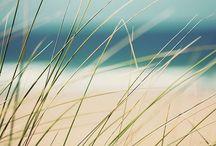 Morze / Seaside