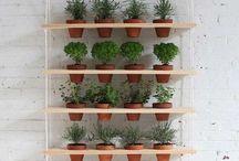 repisa plantas terraza