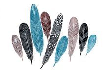 pennyfeather / Pennyfeather identity inspiration
