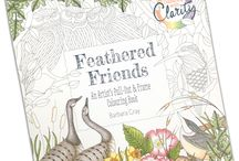 Colour with Clarity from Claritystamp / Finished samples from the Colour with Clarity range of products.  Colouring Book Colouring Postcards Colouring Bookmarks  www.claritystamp.co.uk