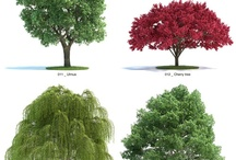 TREES FOR DESIGNS
