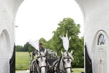 Wedding Transport Inspiration / You can arrive in style with these wedding transport ideas.