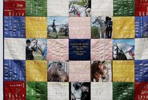 Horse shows / by Linda Murdock