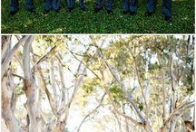 Ideas for photo wedding