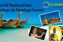 All Asia Tour Packges / Flamingo team is working hard for the prosperity of our people, our society and our country