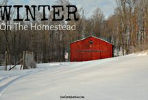 Homesteading & Country Living / Clean, simple, sustainable, country living.