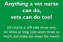 Veterinary Nursing // Veterinary Medicine // / I am a veterinary nurse, this is my board for all things veterinary related.