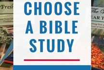 Leading a Bible Study Group Board / how to lead a Bible study, Bible study small group, women's bible study small group leading, small group leadership, lead a Bible study group board, choose a Bible study for a group