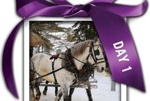 12 Days of Ontario Gifts / Check back each day until December 24th, 2014 to discover a new way to give the gift of Ontario.