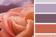 kleur pallet
