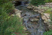 cascadas y caminos de agua