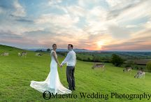 Emily and Chris at Deer Park / A very special wedding day at Deer Park worcestershire.