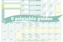 Love these Printables! / Forms to make every day go a little smoother!