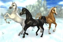 SSO (Star Stable Online)