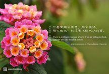 Jingsi aphorism