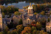 Notre Dame / by Lori Zimmerman