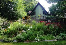 Cool Places To Stay While Visiting Indiana Dunes / Bed and Breakfast/Inns/Camping