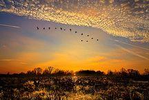 Sky / Cielos impresionantes para mirar