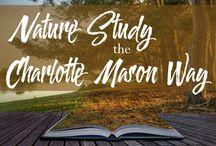 Homeschool - nature journal
