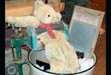 Bears/Teddy Bears