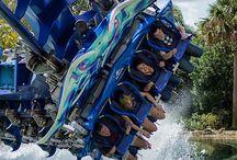 .thrill rides.