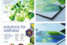 Segno's Creations / Our completed projects. #graphicdesign #webdesign #print