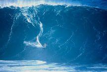 Surf the Ocean 》