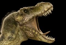 Dinosaurer. / Dinosaurer er en gruppe krypdyr som dominerte landjorden i mesozoikum, i de geologiske periodene trias, jura og kritt, fra omtrent 247 til 65 millioner år før vår tid. Wikipedia Vitenskapelig navn: Dinosauria Høyere klassifisering: Dinosauriformes